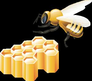 Пчелки в сотах