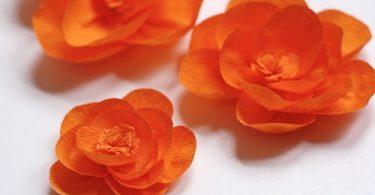 Цветочек и гофробумаги