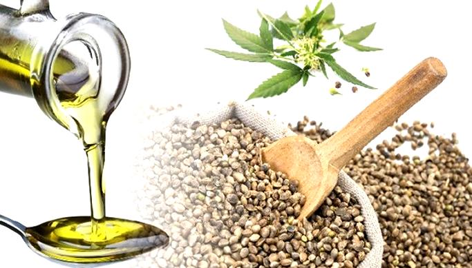 Конопляные семена уголовная ответственность болезни лечащиеся марихуаной