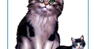 """Картинки для детей """"Кошка и котенок"""""""