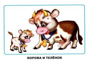 """Картинки для детей """"Корова и теленок"""""""