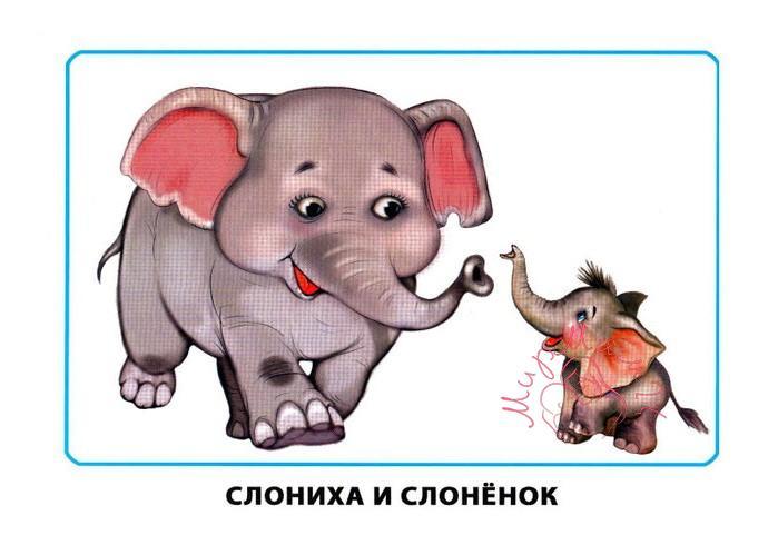 """Картинки для детей """"Слониха и слоненок"""""""
