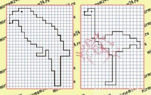 Графический диктант по клеточкам